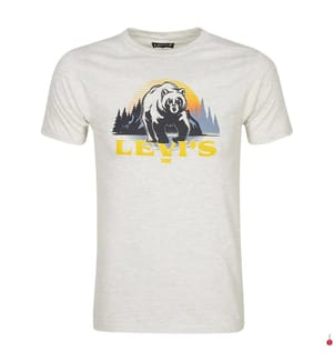 T-Shirt - Light Gray